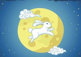 صورة أرنب فى القمر