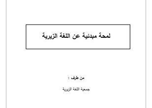 صورة لمحة مبدئية عن اللغة الزيرية